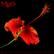 dj-melo-best-of-vocal-de-luxe-edition-2012-front