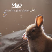 DJ Melo - Vocal Deluxe Edition 95